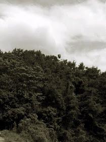 la-piedra-flotante-gushan-china LA PIEDRA FLOTANTE (Gushan-China)