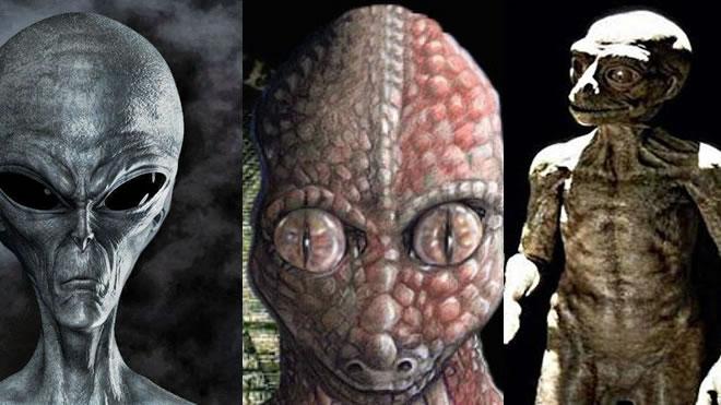 las-tres-especies-extraterrestres-mas-influyentes-en-la-tierra Las tres especies extraterrestres más influyentes en la Tierra