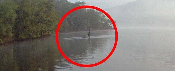 Fotografían una criatura parecida al monstruo del Lago Ness en Inglaterra