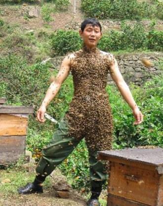 ha meg szeretné nézni a képet, kérjük, engedélyezze a megjelenítését! -mézet, vagy csípést?