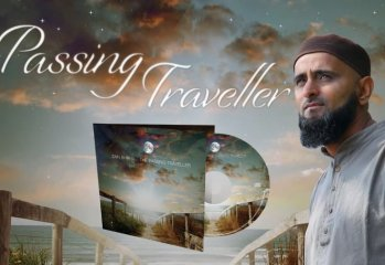 the passing traveller