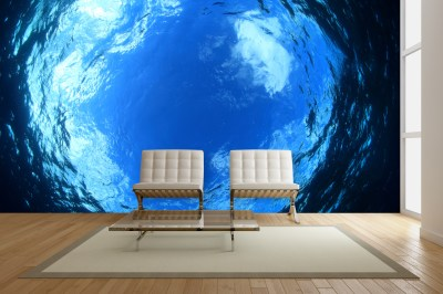 Exotic Underwater Wall Mural Ideas for Your Living Rooms ...