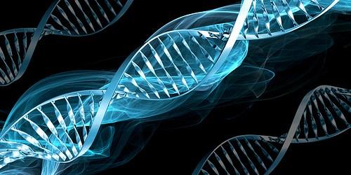 Islamic Bioethics in the Twenty-First Century