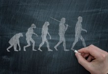 Task Force Essay: Evolution and Islam – Is there a contradiction?