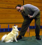 Must Love Dogs | Student Teaching Dog a Trick