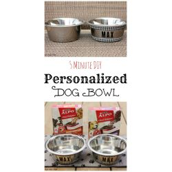 Precious Minute Diy Personalized Dog Such An Inexpensive Way Tomakeover My Easy Diy Personalized Dog Personalized Dog Bowls Personalized Dog Bowls