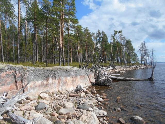 Скалистые острова на озере Среднее Куйтто. Фото: Андрей Туоми