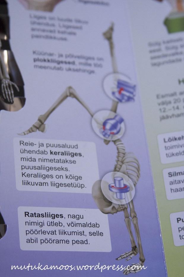 raamat inimese kehast 3