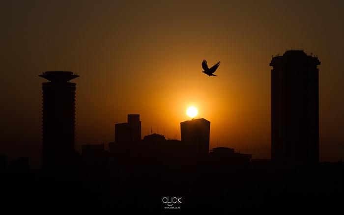 African Screens 01 – Nairobi Sunrise