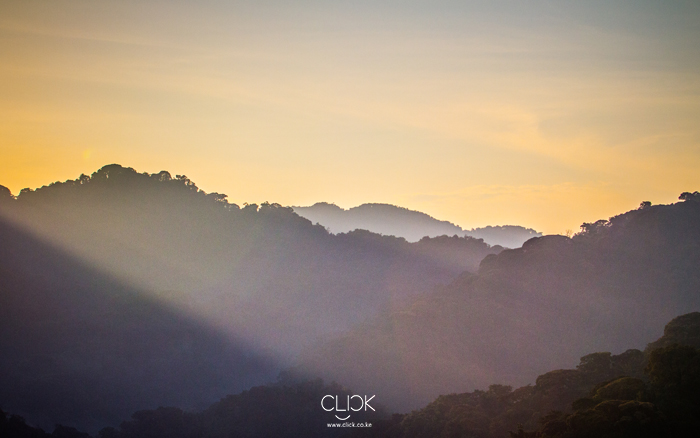 African_Screens_Wallpapers_Nyungwe_Sunrise-700px