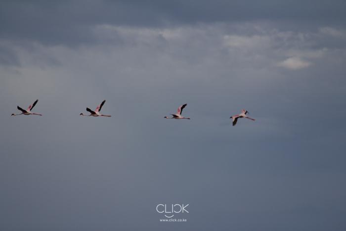 Turkana_Northern_Kenya-21