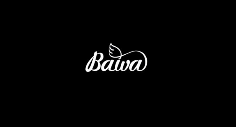 The Bawa Story