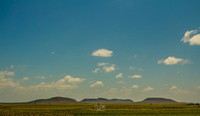 Amboseli_Onetouch_Live-1