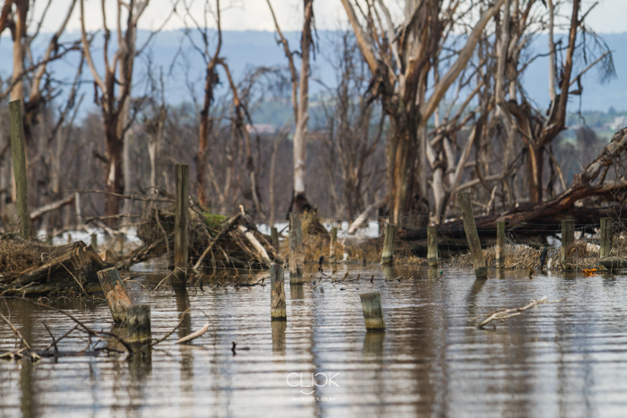 Lake_Nakuru_Flood-21