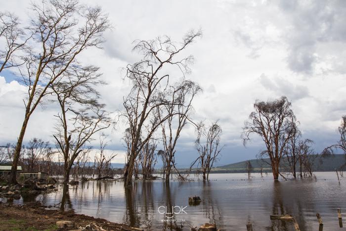 Lake_Nakuru_Flood-31