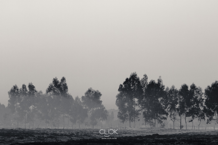Lake_Ol-Bolossat-8