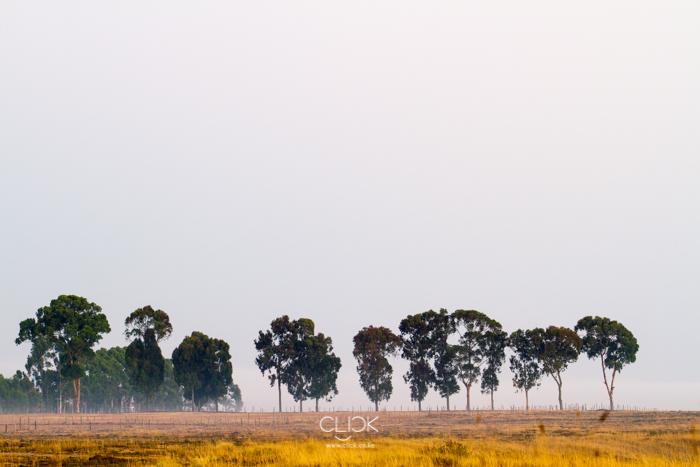 Lake_Ol-Bolossat-9