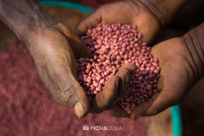 Farm_Africa_Kitui_by_Mwangi_Kirubi-5