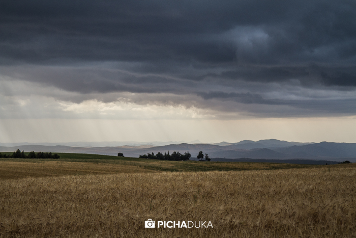 Meru-National-Park-Mwangi-Kirubi-1