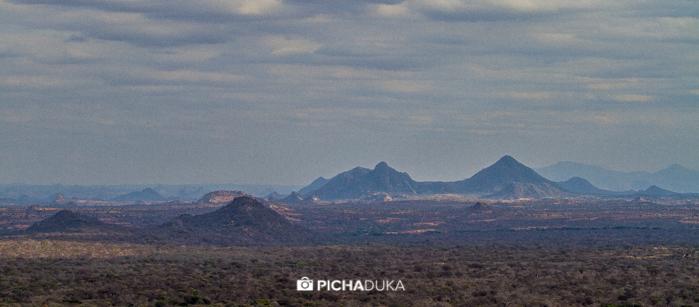 Meru-National-Park-Mwangi-Kirubi-40