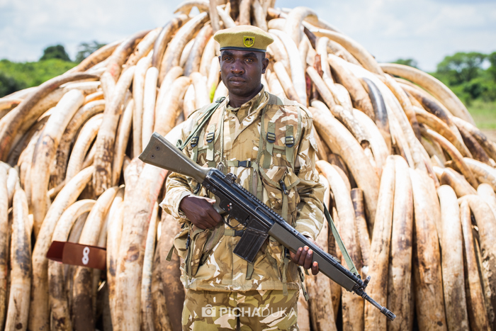 Ivory-Burn-Kenya-16