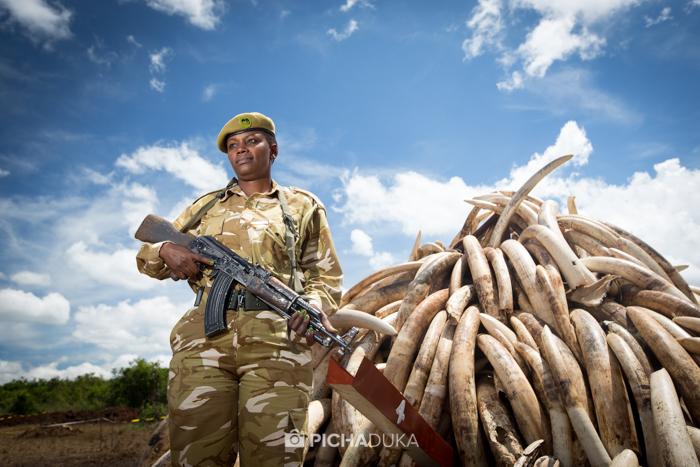Ivory-Burn-Kenya-19