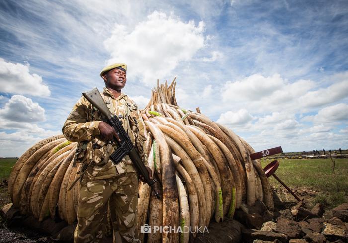 Kenya's Wildlife Protectors