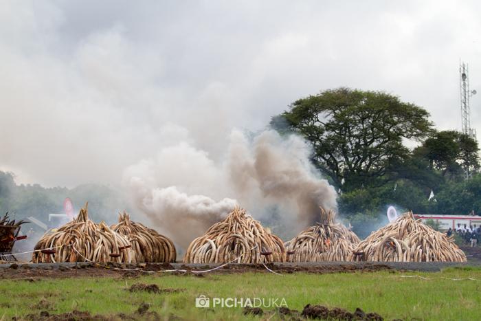 Kenya-Ivory-Burning-26