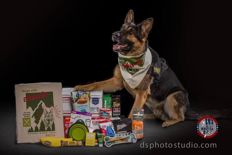 Large Of German Shepherd Police Dog