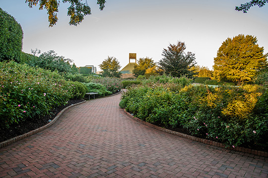 View 1: The Rose Garden in fall