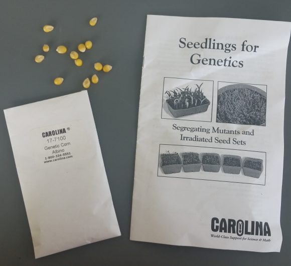 A packet of genetically modified corn seeds and instruction booklet