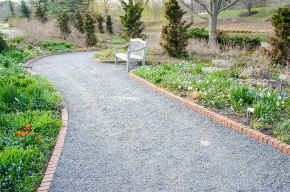 PHOTO: A view of the south path, dotted with the blues and reds of scilla and tulips.