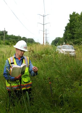 PHOTO: A ComEd employee examines a plant in the field, open plant ID book in his hand.