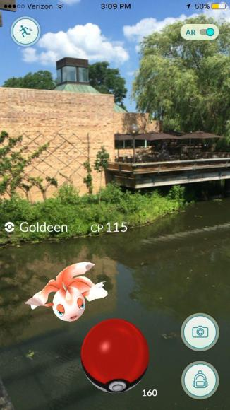 PHOTO: Goldeen Pokémon at the Visitor Center bridge.