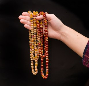 PHOTO: Indian corn necklaces.