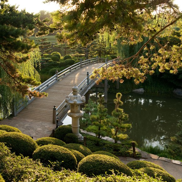 PHOTO: Japanese Garden bridge.