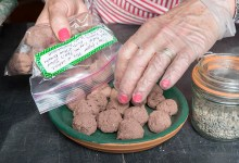 PHOTO: Nancy handles finished seed balls using plastic gloves.