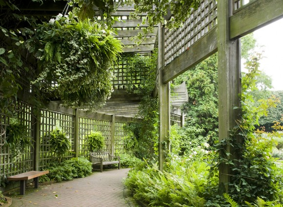PHOTO: Rose Garden arbor.