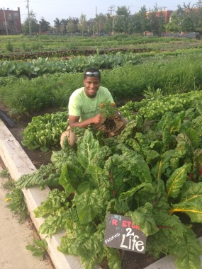 PHOTO: Stacey Kimmons of Return To Life Farming, a Windy City Harvest 2014 Apprenticeship Graduate.