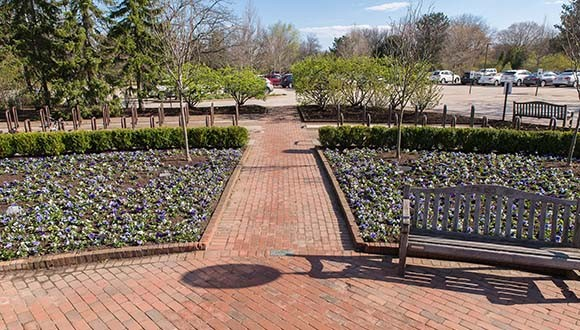 The new plantings at the Visitor Center entrance.