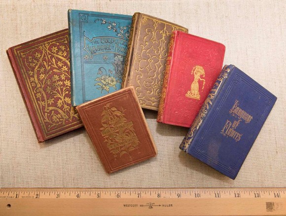 PHOTO: The tiny books of of The Language of Flowers.