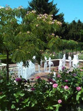 The Circle Garden in summer