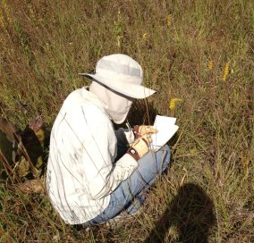 PHOTO: Anne crouched in the field on a sunny day, in sun hat and gardening gloves, scribbling notes.