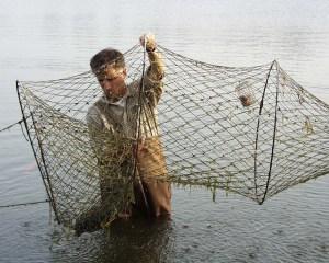 Hoop trap for aquatic turtles