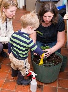 PHOTO: a small boy potting up a plant.