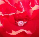 PHOTO: An engagement ring in a rose bloom.