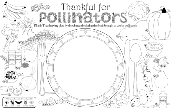 Thanksgiving placemat to color and match pollinators to the food they produce.