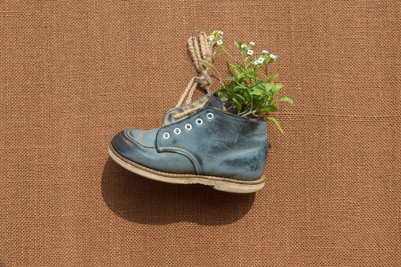 a toddler shoe with alyssum growing in it is laced with twine and hanging on the wall,