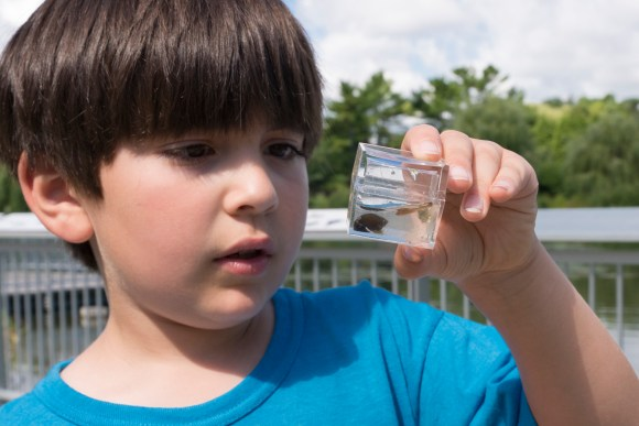 Allowing time to examine the outdoors in detail makes children better overall observers, and better able to focus in class.