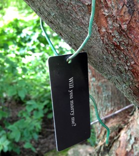 """PHOTO: A tree tag labeled, """"Will you marry me?"""""""